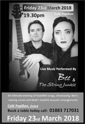 Bee & The String Junkie - Entertainment in Oxted